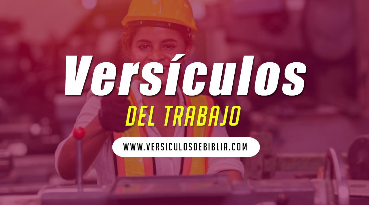 vesículos de trabajo y provición